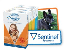 :Sentinel Spectrum Tasty Chews
