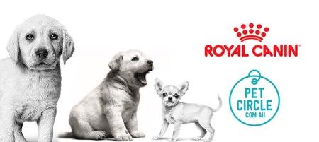 Royal Canin and Pet Circle